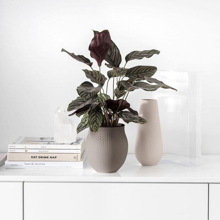 Collier Vasen