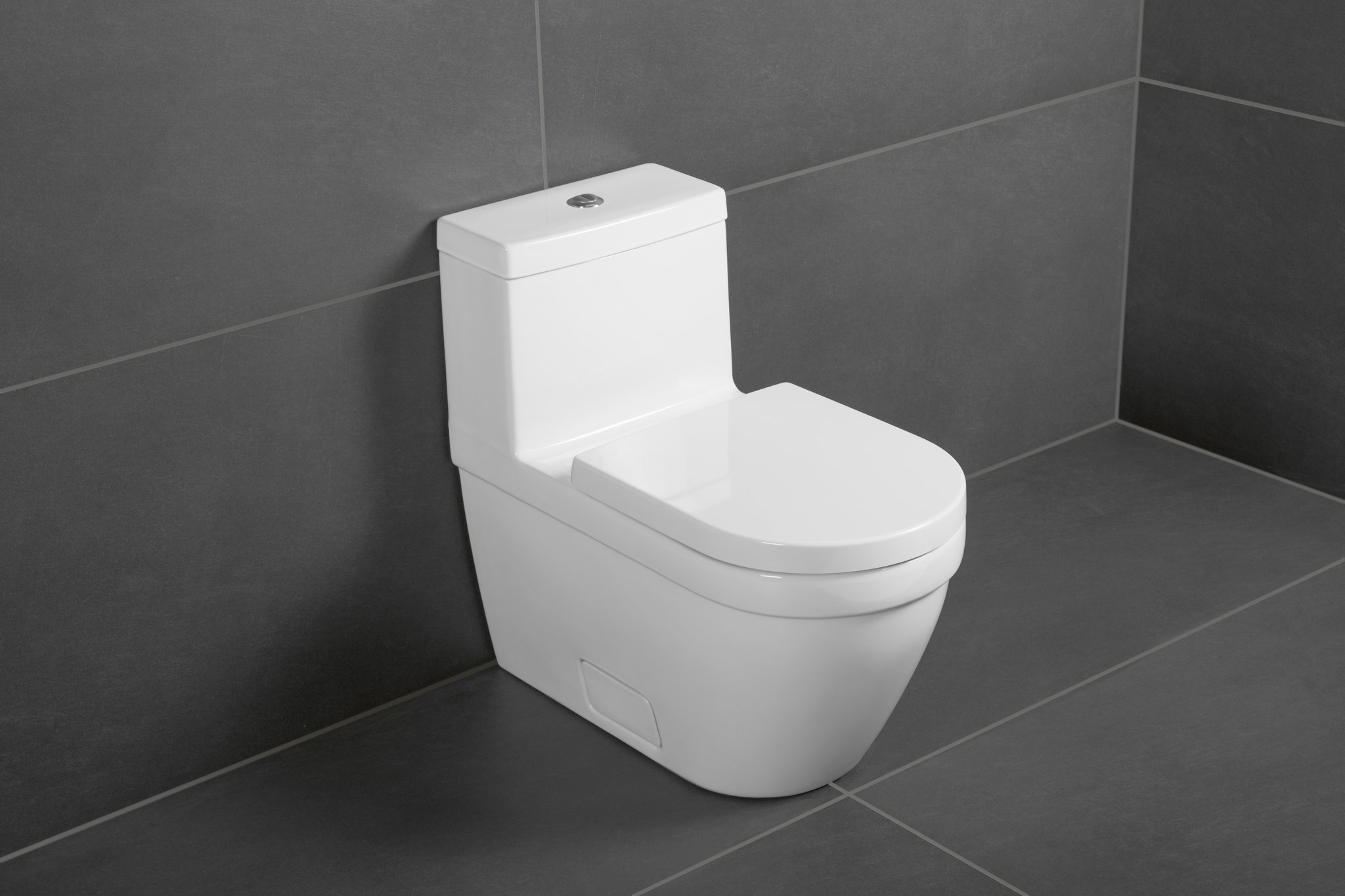 Architectura One Piece Toilet Siphonic Toilet Rectangle